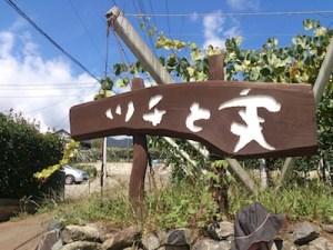 山梨ブドウ狩り ツチと実