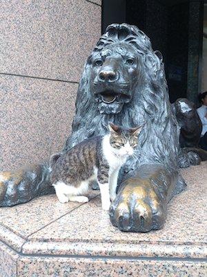 銀座路地裏1三越のネコ