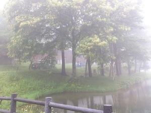 コテージ林