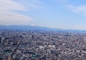 2016新年会 富士山