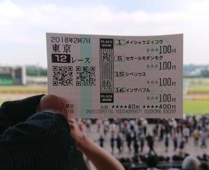 最終レースの馬券
